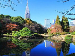 新宿御苑 Shinjuku Gyoen - Nationalgarten