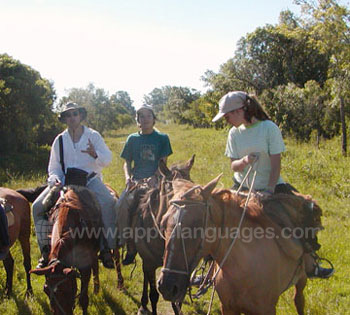 Horse riding is less hair-raising!