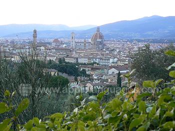 Blick über das historische Stadtzentrum