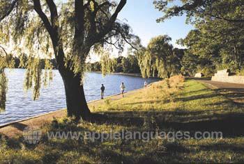 Joggen im Montréal-Park