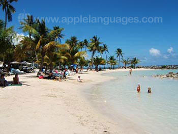 Guadeloupe hat prachtvolle Strände!