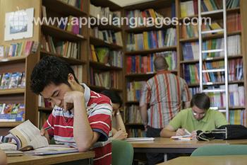 Schüler in der Schulbibliothek