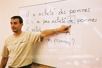 Friendly French teachers