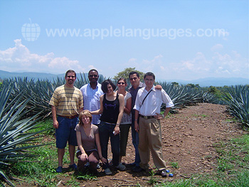Visit to Tequila farm
