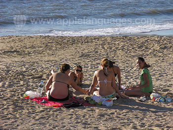 Students relaxing at the beach