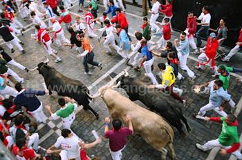 The famous bull run