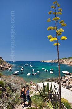 Ibiza is full of stunning vistas