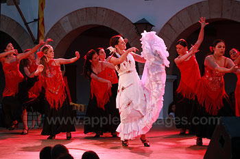 Excursion to watch Flamenco Dancing