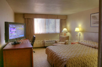 Room in hotel accommodation
