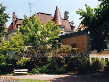 The school grounds