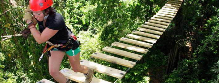 Weg in den Baumwipfeln - Bocas del Toro