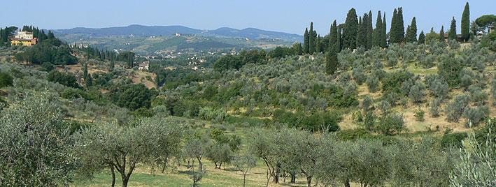 Italienische Landschaft bei Florenz