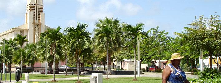 Kirche und Palmen in Sainte-Anne