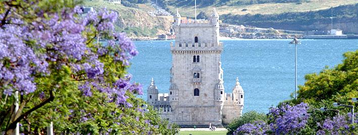 Torre de Belém und Blumen, Lissabon