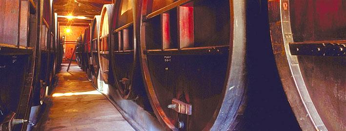 Spanisch und Wein in Mendoza