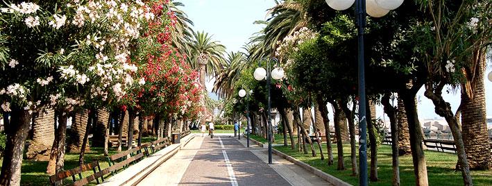 Baumgesäumte Straße in Salerno