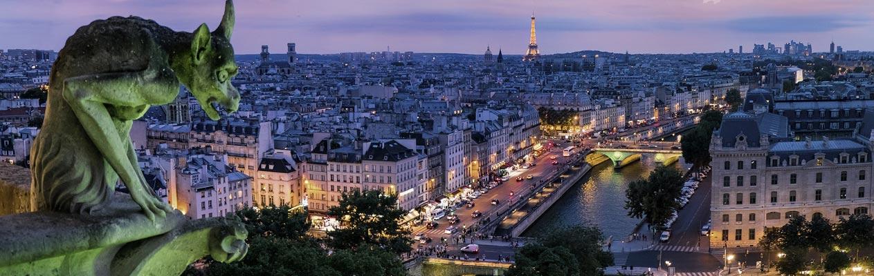 Gargoyle, der Paris bei Nacht überblickt